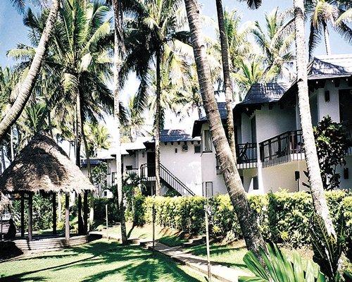 Fiji Palms Image
