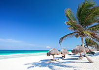 Discover all that Cancun has to offer